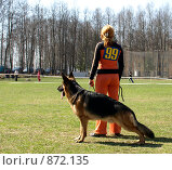 Купить «Работа с собаками», фото № 872135, снято 26 апреля 2009 г. (c) Фёдоров Евгений / Фотобанк Лори