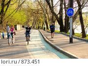 Купить «Велосипедная дорожка в Нескучном саду в Москве», фото № 873451, снято 3 мая 2009 г. (c) Дмитрий Яковлев / Фотобанк Лори