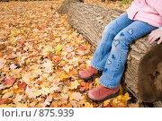 Купить «В осеннем парке», фото № 875939, снято 25 октября 2008 г. (c) Игорь Киселёв / Фотобанк Лори
