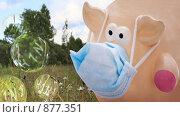 Свинья в медицинской маске. Стоковое фото, фотограф Ольга Киселева / Фотобанк Лори