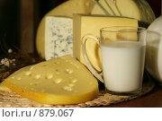 Купить «Молоко и сыр», фото № 879067, снято 11 декабря 2005 г. (c) Татьяна Белова / Фотобанк Лори