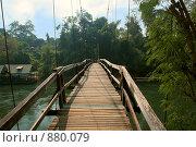Купить «Подвесной мост через реку Квай. Тропики. Таиланд», эксклюзивное фото № 880079, снято 15 декабря 2008 г. (c) Татьяна Белова / Фотобанк Лори