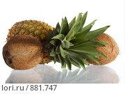 Купить «Ананас и кокос», фото № 881747, снято 22 сентября 2019 г. (c) Goruppa / Фотобанк Лори