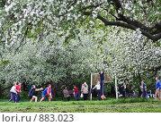 Игра в волейбол в цветущем яблоневом саду (2009 год). Редакционное фото, фотограф Николай Коржов / Фотобанк Лори