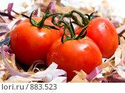 Красные томаты. Стоковое фото, фотограф Liudmila Belyaeva / Фотобанк Лори
