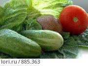Свежие овощи. Стоковое фото, фотограф Insomnia / Фотобанк Лори