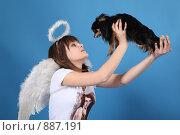 Купить «Девушка-ангел с собачкой на голубом фоне», фото № 887191, снято 3 мая 2009 г. (c) Евгений Батраков / Фотобанк Лори