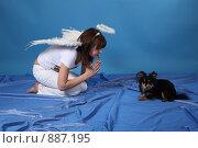 Купить «Девушка-ангел с собачкой на голубом фоне», фото № 887195, снято 3 мая 2009 г. (c) Евгений Батраков / Фотобанк Лори