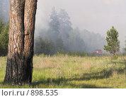 Купить «Лесные пожары. Репортаж», фото № 898535, снято 31 мая 2009 г. (c) Andrey M / Фотобанк Лори