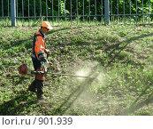 Купить «Рабочий стрижет траву на обочине трассы», фото № 901939, снято 1 июня 2009 г. (c) Александр Подшивалов / Фотобанк Лори