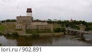 Купить «Вид на Нарвский замок», эксклюзивное фото № 902891, снято 10 июня 2008 г. (c) Литвяк Игорь / Фотобанк Лори