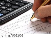 Купить «Заполнение налоговой декларации», эксклюзивное фото № 903903, снято 2 июня 2009 г. (c) Juliya Shumskaya / Blue Bear Studio / Фотобанк Лори