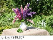Купить «Полевые цветы в белой вазе», фото № 918807, снято 14 июня 2009 г. (c) Наталья Волкова / Фотобанк Лори