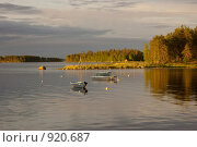 Купить «Лодки в бухте, вечернее освещение», эксклюзивное фото № 920687, снято 27 июня 2008 г. (c) Наталия Шевченко / Фотобанк Лори
