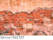 Купить «Кирпичная стена», фото № 923107, снято 16 сентября 2019 г. (c) Egorius / Фотобанк Лори