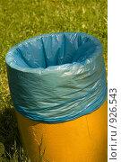 Купить «Мусорный бак», фото № 926543, снято 16 июня 2009 г. (c) Максим Солдатов / Фотобанк Лори
