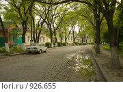 Лужа на булыжной мостовой на тенистой улице в городе Ейске (2009 год). Редакционное фото, фотограф Владимир Чинин / Фотобанк Лори