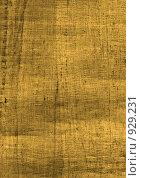 Купить «Пергамент», фото № 929231, снято 5 августа 2020 г. (c) Сергей Галушко / Фотобанк Лори