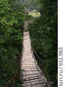 Купить «Подвесной мост», фото № 932983, снято 20 июня 2009 г. (c) евгений блинов / Фотобанк Лори