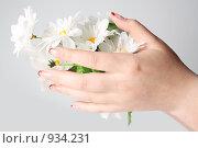 Руки с красивым маникюром и цветком. Стоковое фото, фотограф Ирина Золина / Фотобанк Лори