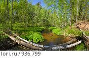 Купить «Утро на реке Смородинке. Панорама.», фото № 936799, снято 31 мая 2009 г. (c) Александр Рощин / Фотобанк Лори