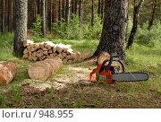 Купить «Дрова и бензопила», фото № 948955, снято 15 июня 2009 г. (c) Елена Азарнова / Фотобанк Лори