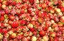 Лесные ягоды: клубника, фото № 956775, снято 29 июня 2009 г. (c) Хайрятдинов Ринат / Фотобанк Лори