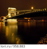 Купить «Будапешт, цепной мост», фото № 958883, снято 31 декабря 2008 г. (c) Paul Bee / Фотобанк Лори