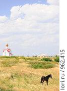 Купить «Традиционный степной пейзаж», фото № 962415, снято 22 июня 2009 г. (c) Александр Катайцев / Фотобанк Лори