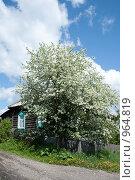 Купить «Дом в деревне», фото № 964819, снято 6 июня 2009 г. (c) Rumo / Фотобанк Лори