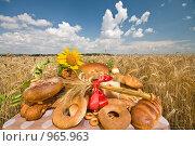 Купить «Хлеб и пшеничное поле.Краснодарский край. Кубань.», фото № 965963, снято 6 июля 2009 г. (c) Федор Королевский / Фотобанк Лори