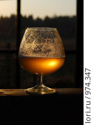 Пиво в бокале. Стоковое фото, фотограф Анастасия Думс / Фотобанк Лори