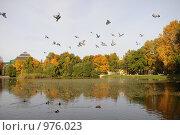 Купить «Таврический сад, осень», фото № 976023, снято 25 сентября 2008 г. (c) Татьяна Едренкина / Фотобанк Лори