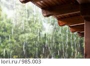 Дождь. Стоковое фото, фотограф Екатерина Душенина / Фотобанк Лори
