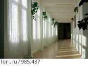 Купить «Школьный коридор», фото № 985487, снято 1 сентября 2008 г. (c) Vladimir Kolobov / Фотобанк Лори