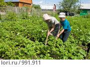 Купить «Ребенок помогает бабушке на даче», фото № 991911, снято 13 июля 2009 г. (c) Куликова Татьяна / Фотобанк Лори