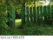 Забор с открытой калиткой. Стоковое фото, фотограф Ксения Шаханова / Фотобанк Лори