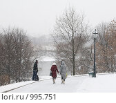 Снегопад в Коломенском (2009 год). Редакционное фото, фотограф Голованова Светлана / Фотобанк Лори