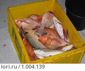 Свежая красная рыба в желтом ящике. Стоковое фото, фотограф Pavel S. Popov / Фотобанк Лори