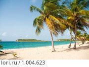 Купить «Пальмы на пляже», фото № 1004623, снято 24 июля 2009 г. (c) Ирина Кожемякина / Фотобанк Лори