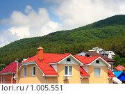Купить «Крыши дома», фото № 1005551, снято 20 июля 2009 г. (c) Олег Ивашкевич / Фотобанк Лори