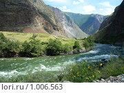 Купить «Челушманская долина. Горный Алтай», фото № 1006563, снято 12 июля 2009 г. (c) Яна Королёва / Фотобанк Лори