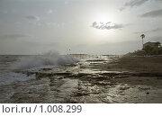 На берегу моря. Стоковое фото, фотограф Сергей Гусев / Фотобанк Лори
