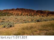 Пустыня в США (2008 год). Стоковое фото, фотограф Евгений Дубинчук / Фотобанк Лори