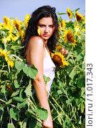 Купить «Девушка в подсолнухах», фото № 1017343, снято 22 июля 2008 г. (c) Мария Виноградова / Фотобанк Лори