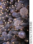 Новогодние украшения. Стоковое фото, фотограф Losevsky Pavel / Фотобанк Лори