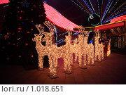 Купить «Олени - украшение к Новому году», фото № 1018651, снято 12 декабря 2008 г. (c) Losevsky Pavel / Фотобанк Лори