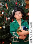 Купить «Мальчик с подарком у новогодней елки», фото № 1018683, снято 25 декабря 2008 г. (c) Losevsky Pavel / Фотобанк Лори