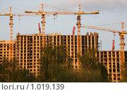 Купить «Строительство высотных жилых домов», фото № 1019139, снято 10 мая 2009 г. (c) Losevsky Pavel / Фотобанк Лори