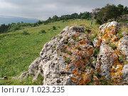 Купить «Скалы плато Лагонаки», фото № 1023235, снято 23 июля 2009 г. (c) Игорь Архипов / Фотобанк Лори